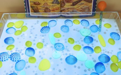 Tactile Shells Matching Sensory Bin